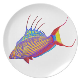 Bell's Flasher Wrasse Fish Plate