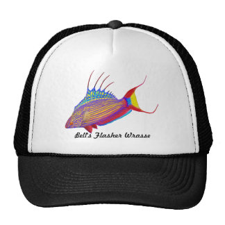 Bell's Flasher Wrasse Reef Fish Hat