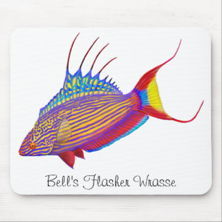 Bell's Flasher Wrasse Reef Fish Mousepad