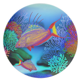 Bell's Flasher Wrasse Reef Fish Plate
