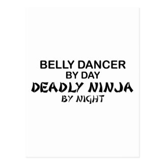 Belly Dancer Deadly Ninja by Night Postcard
