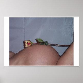 Belly del rosa póster