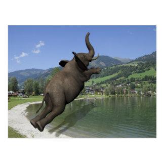 Belly Flop Elephant Postcard
