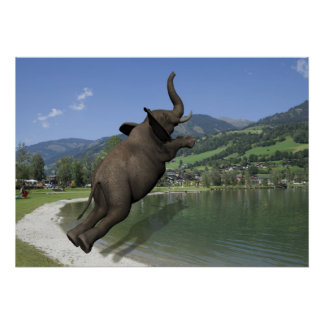 Belly Flop Elephant Poster