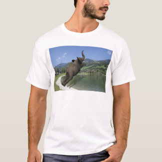 Belly Flop Elephant T-Shirt