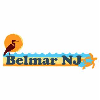Belmar Esculturas Fotograficas