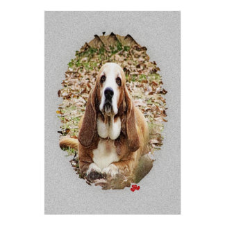 Beloved Basset Poster