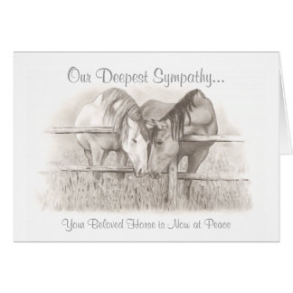 Beloved Horse at Peace  Veterinary Sympathy Card