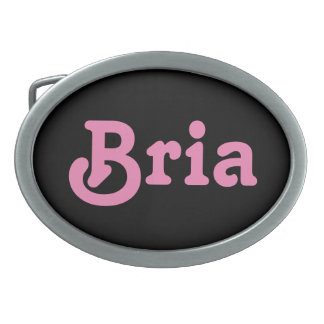 Belt Buckle Bria