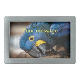 Belt buckle cute blue Hyacinth Macaw parrot