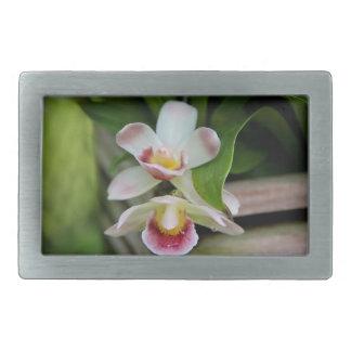 Belt Buckle - Fan Shaped Orchid