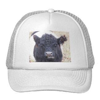 Belted Galloway Cow - Emma Trucker Hat
