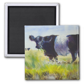 Belted Galloway Cow Painting 2 Inch Square Magnet