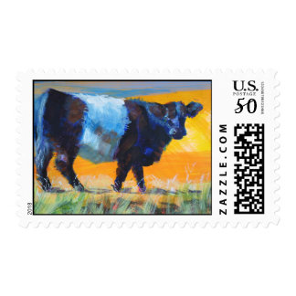 Belted Galloway Cow postage stamps