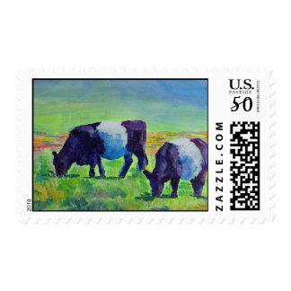 Belted Galloway Cows Dartmoor postage stamps