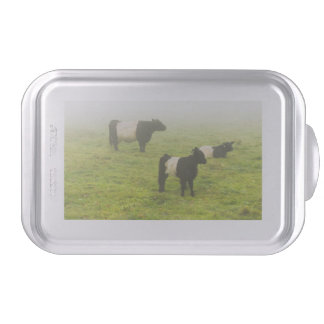 Belted Galloway Cows Grazing In foggy Farm Field Cake Pan
