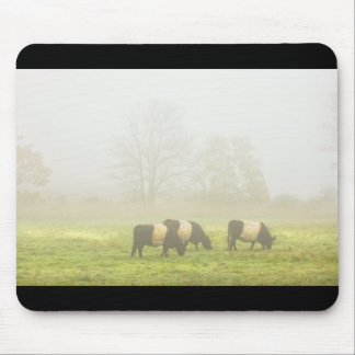 Belted Galloway Cows Grazing On foggy Farm Field Mouse Pad
