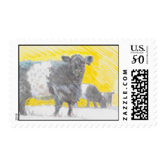 Belted Galloway Cows illustration postage stamps