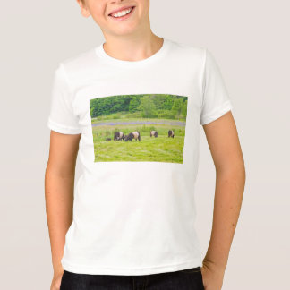 Belted Galloway Cows in Pasture Rockport Maine T-Shirt