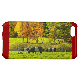 Belted Galloway Cows On Rockport Maine Farm Cover For iPhone 5C