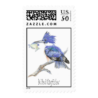 Belted Kingfisher, Bird, Nature, Wildlife, Postage