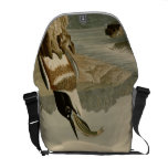 Belted Kingfisher Courier Bags