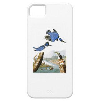 Belted Kingfisher John Audubon Birds of America iPhone SE/5/5s Case