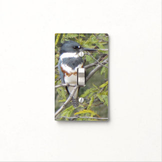 Belted Kingfisher Light Switch Cover