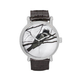 Belted Kingfisher Wristwatches