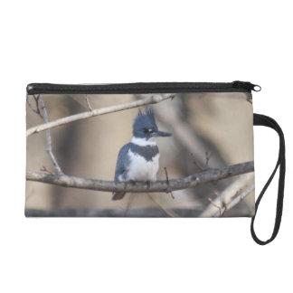 Belted Kingfisher Wristlet Purse