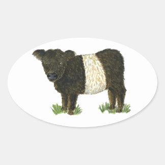 'Beltie' Belted Galloway Oval Sticker