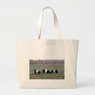 Beltie Cow Herd in Fall Bag