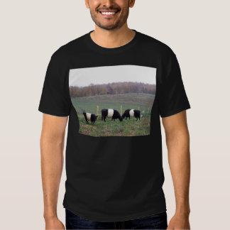 Beltie Cow Herd in Fall Tshirts