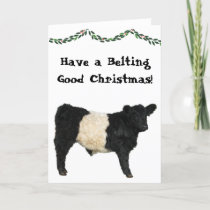 Belting Good Christmas Belted Galloway Beltie Cow Card