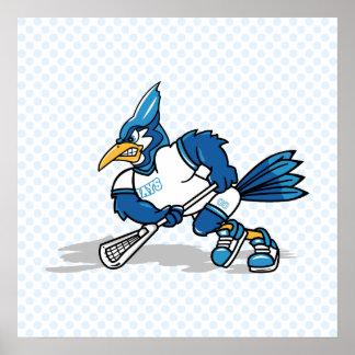 Beltran Blue Jay Poster