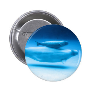 Beluga Mother and Baby Pinback Button