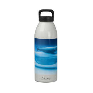 Beluga Mother and Baby Reusable Water Bottle