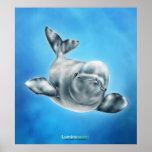 Beluga - Poster