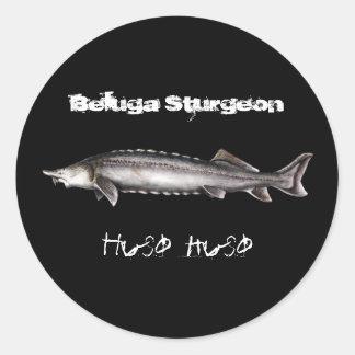 Beluga Sturgeon Classic Round Sticker