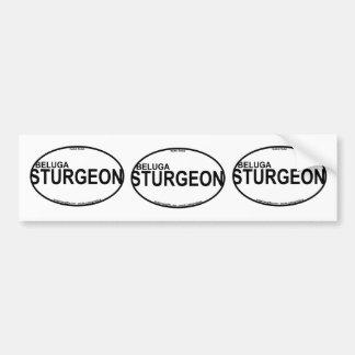 Beluga Sturgeon Euro Stickers Car Bumper Sticker