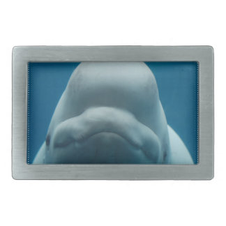 beluga-whale-15.jpg rectangular belt buckle
