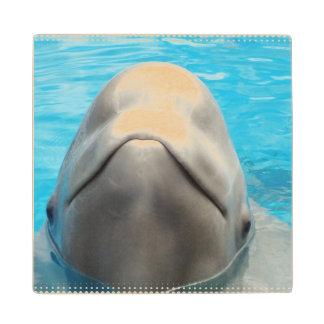 beluga-whale-1.jpg posavasos de madera