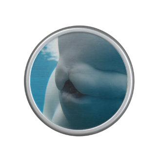 beluga-whale-27.jpg altavoz bluetooth
