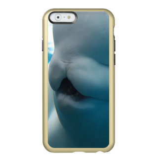 beluga-whale-27.jpg incipio feather® shine iPhone 6 case