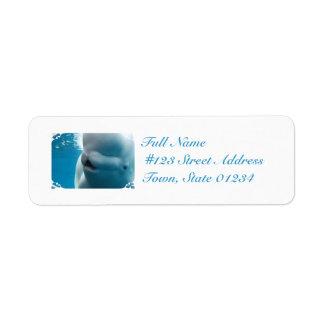 beluga-whale-27.jpg return address label