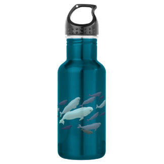 Beluga Whale Art Marine Life Stainless Steel Water Bottle