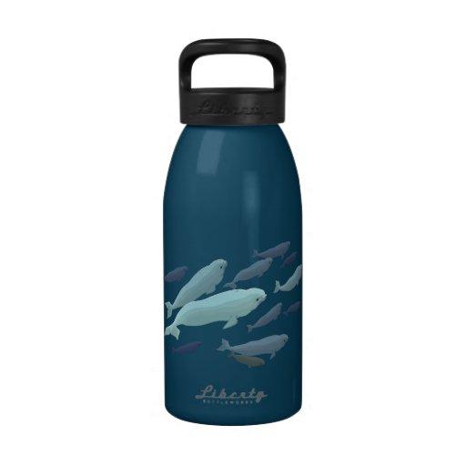 Beluga Whale Art Water Bottle Marine Life Gifts