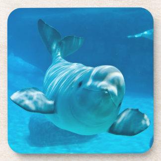 Beluga Whale Beverage Coaster
