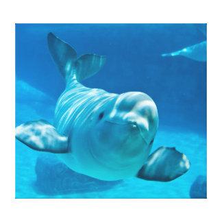 Beluga Whale Canvas Print