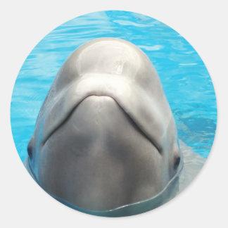 Beluga Whale Classic Round Sticker